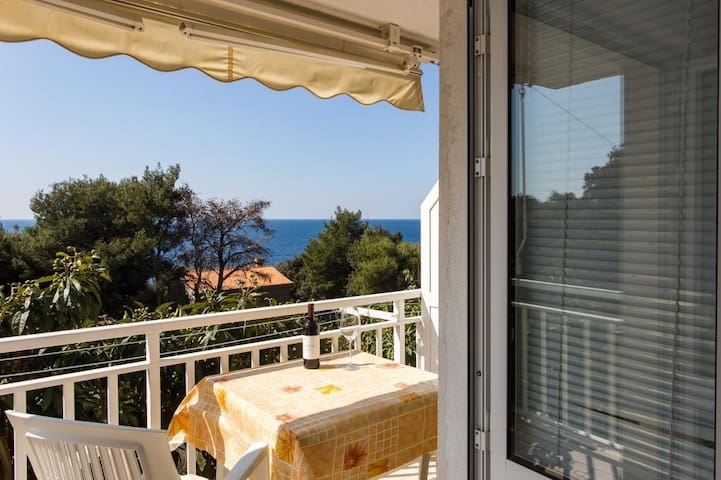 Villa Ana Dingač - One Bedroom Apartment with Balcony and Sea View (Apartment 1)