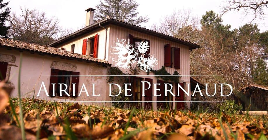 Airial de Pernaud: Un séjour au cœur de la forêt