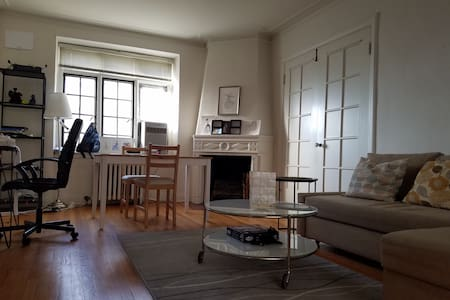 Historical Apartment in Downtown Evanston - Evanston