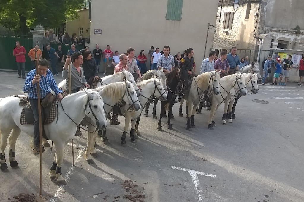 Eindceremonie van de Stierenloop in Moulézan
