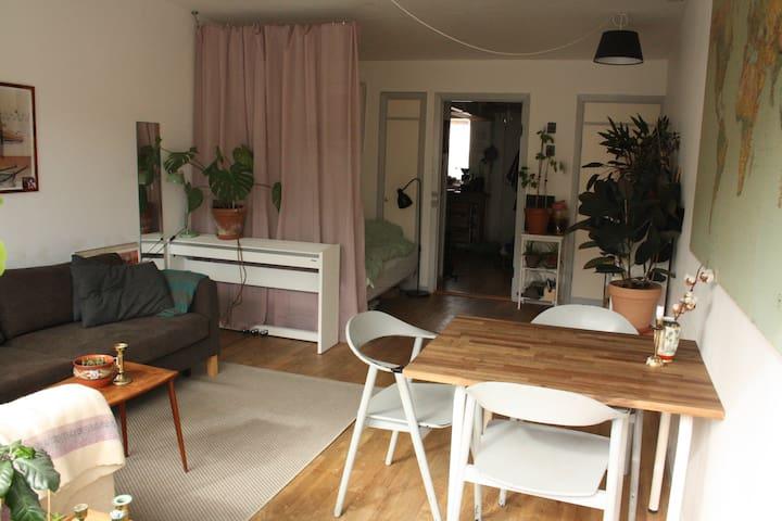 Bright Balcony Apartment