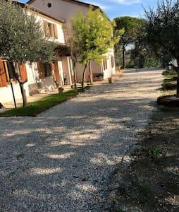 B&B Terra Chiara - Pesaro