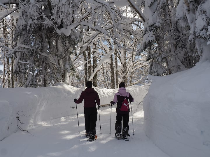 Schneeschuhwandern im Winter-Wonderland