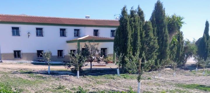 Alojamiento Rural completo, 20 plazas