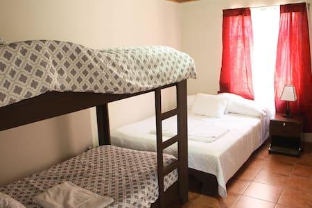 Casa Jungle Monteverde B&B - Monteverde - Bed & Breakfast