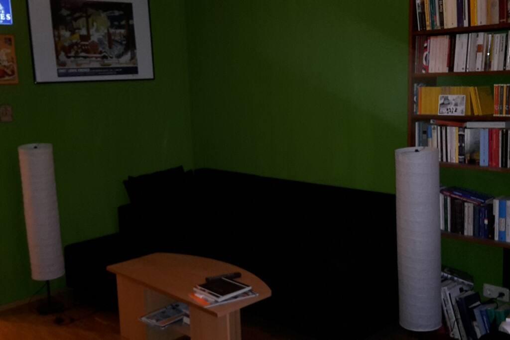 Wohnzimmer mit ausziehbarer Couch für zwei Personen :)