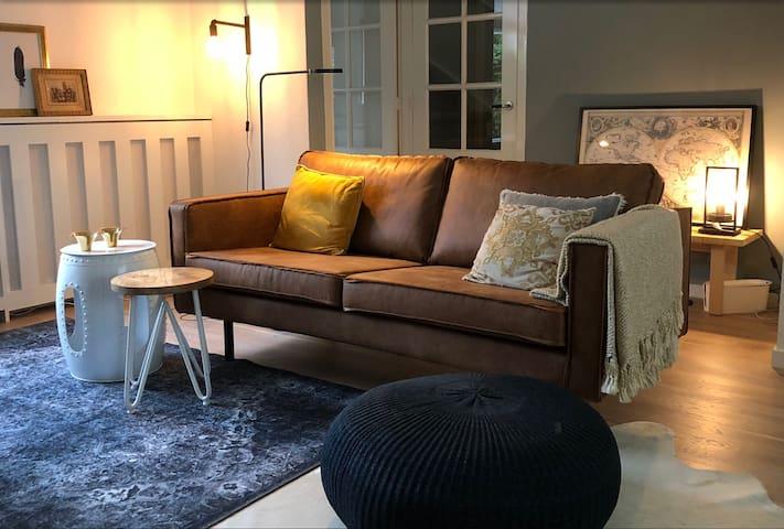 Luxurious livingroom.