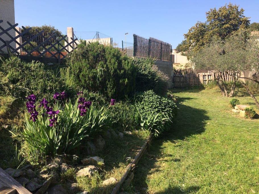 Villa jardin et piscine au calme houses for rent in for Beaucaire piscine