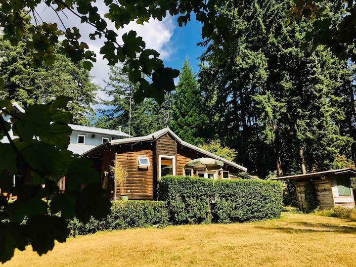 3 Petal Suite - hot tub, sauna, outdoor fireplace