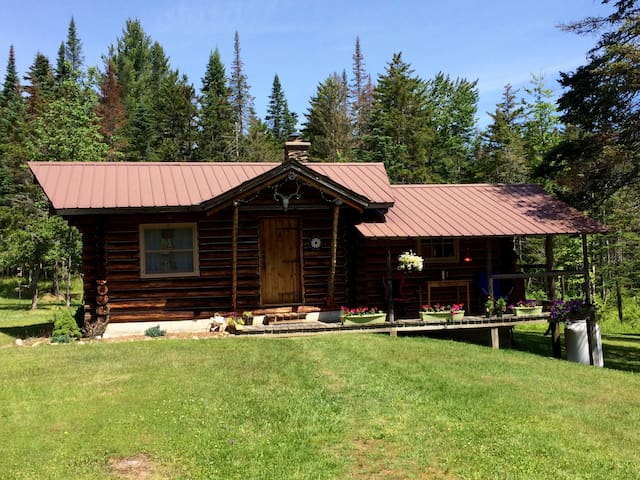 THE CABIN.  In Blue Mountain Lake