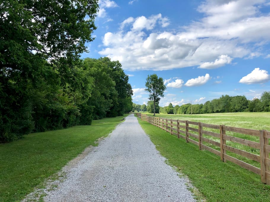 Entering Paradise As You Head Down the Laneway to the Ranch.