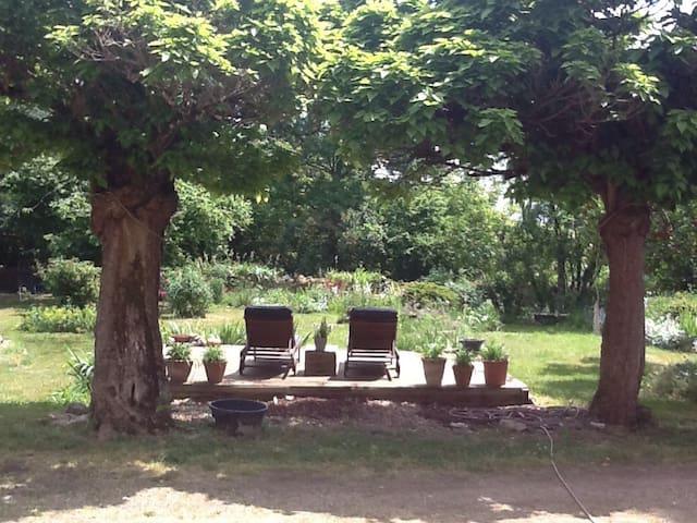 Vue au  jardin / view on the garden