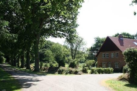 Sanierter Resthof Holsteinische Schweiz- Natur pur - Högsdorf - 獨棟
