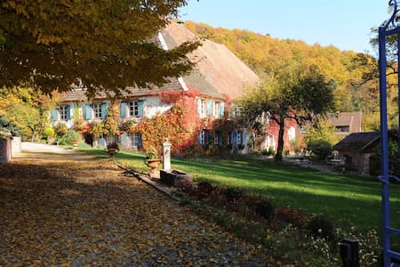Le Schaeferhof Chambres d'Hôtes de Charme et Spa - Murbach - Casa de hóspedes