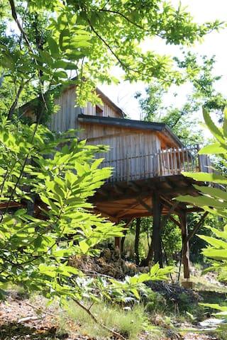 Cabane sur Pilotis en Cevennes