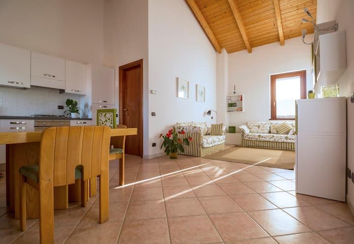 Appartamento panoramico con giardino in villa