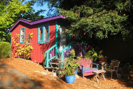 Sunny private cabin in redwood country. - Sebastopol