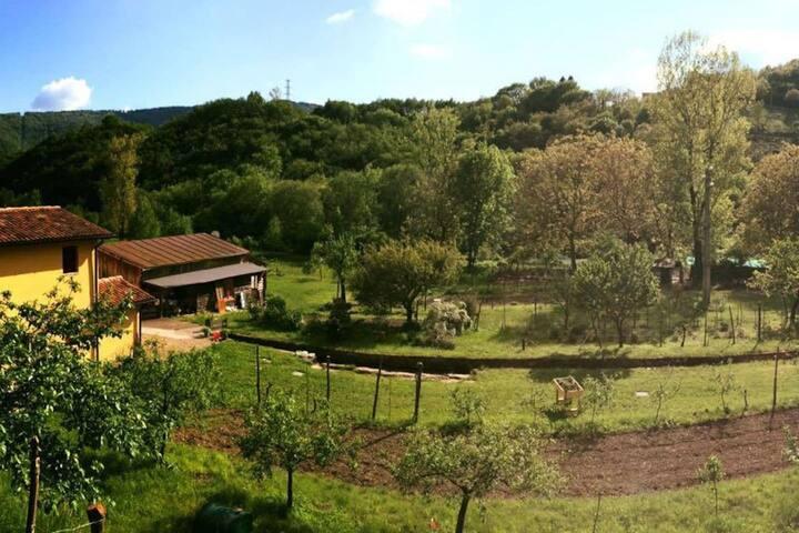 mulino la Vallina, bio fattoria