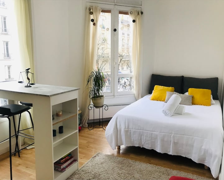 Charming apt in the center of the 15th - Professional Cleaning