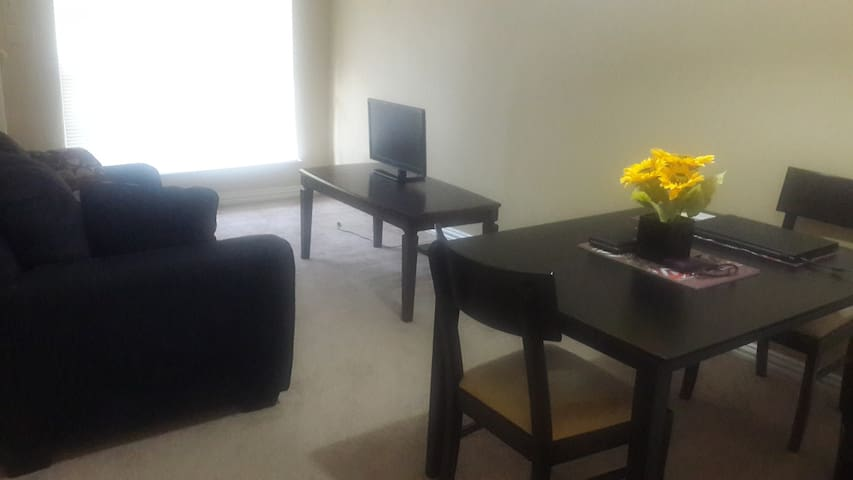 1 bedroom apartment near Hobby airport.
