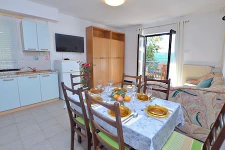 Two Bedroom Apartment, in Novigrad, Terrace