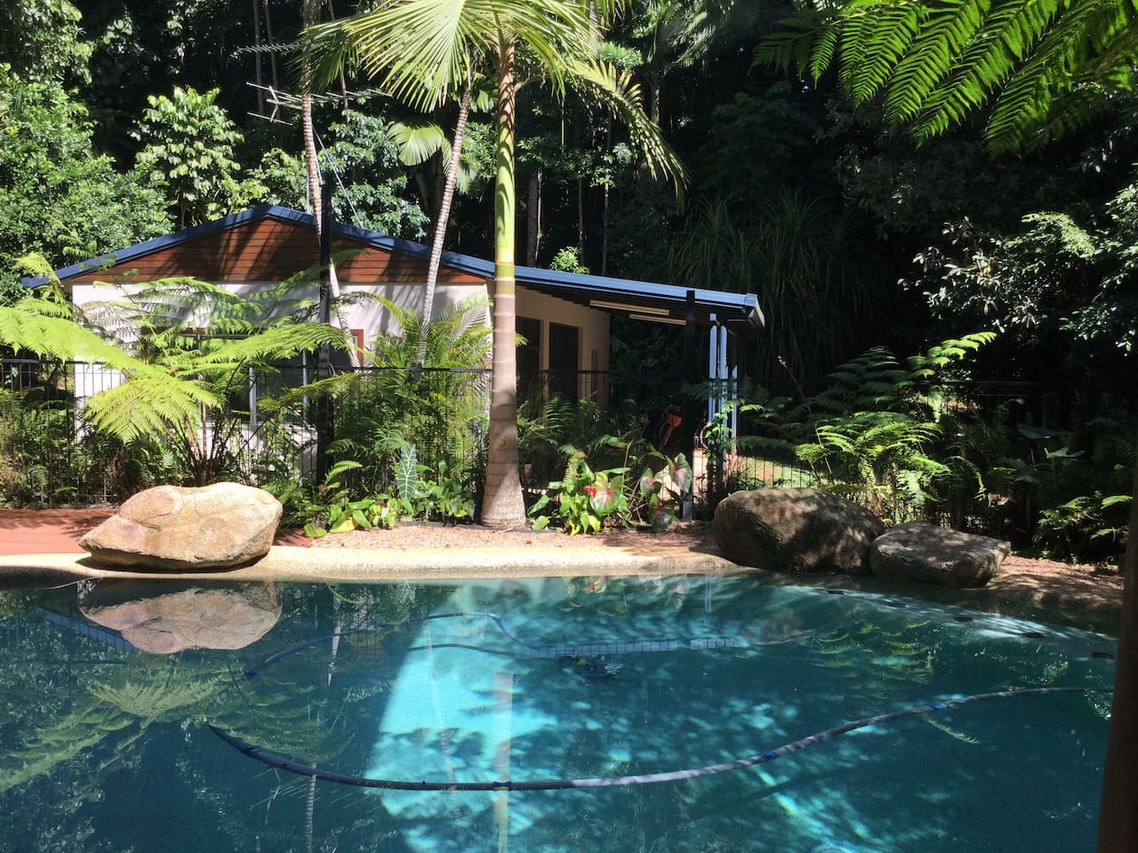 Tropical garden setting pool