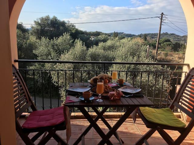 The Olive Tree House - Kompitsi