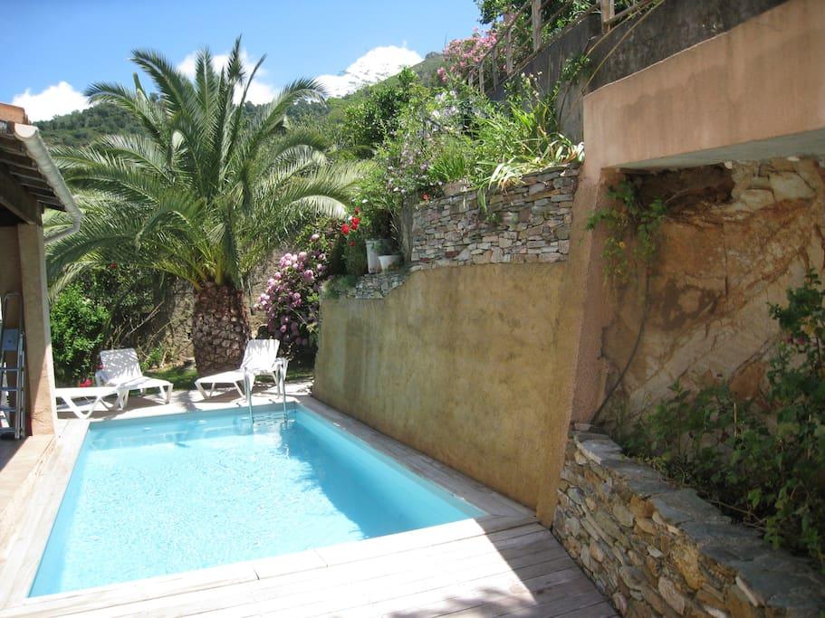 Maison st florent vue mer montagne piscine priv e for Piscine saint florent