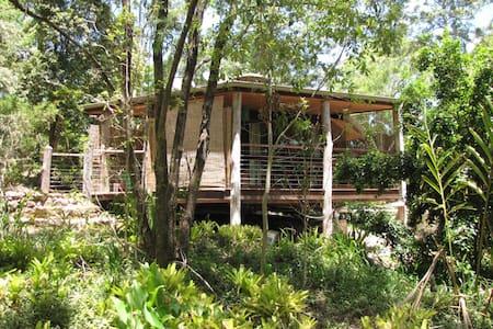 Delightful cabin in sub-tropical rainforest - Conondale - 小木屋