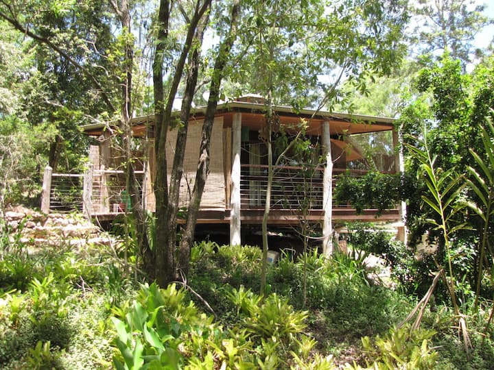 Delightful cabin in sub-tropical rainforest