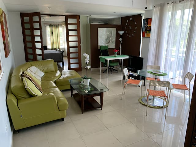 Complete Apartment one step away from the Malecon