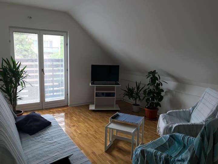 Apartman Vrelo
