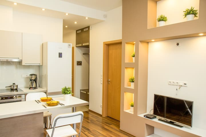 Fully Equipped, Modern Apartment, near Buda Castle
