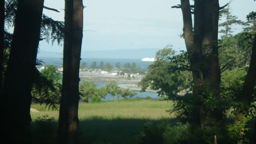 Bay view with Tsawwassen Ferry