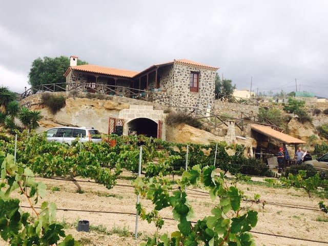 """""""Casa del Coronel"""" - Santa Cruz de Tenerife - Dom"""