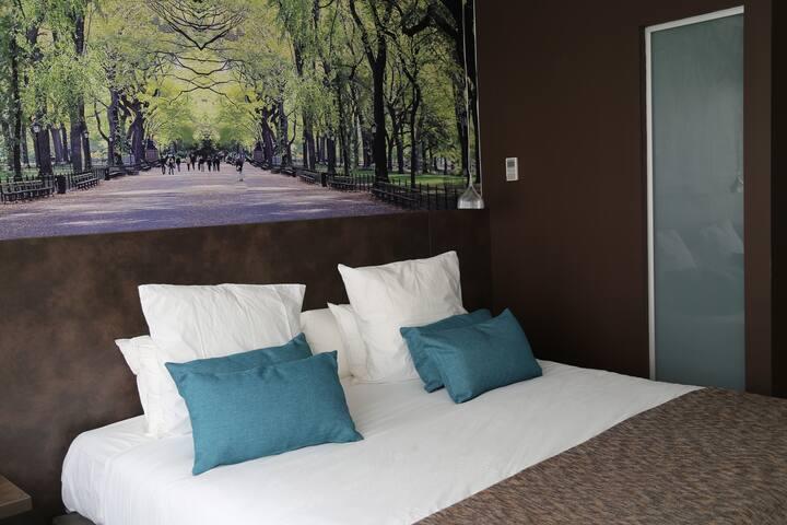 Central Park Hôtel & Spa - Chambre Classique