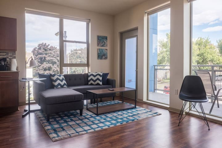 SPECTACULAR 2BR APT W/ CITY VIEWS NEAR BRADY ST