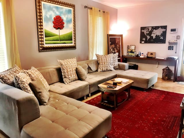 Comfortable living room.  The couch converts into a large bed if needed.