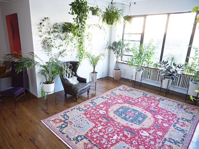 HUGE Loft! Comfy! Light! Plants!