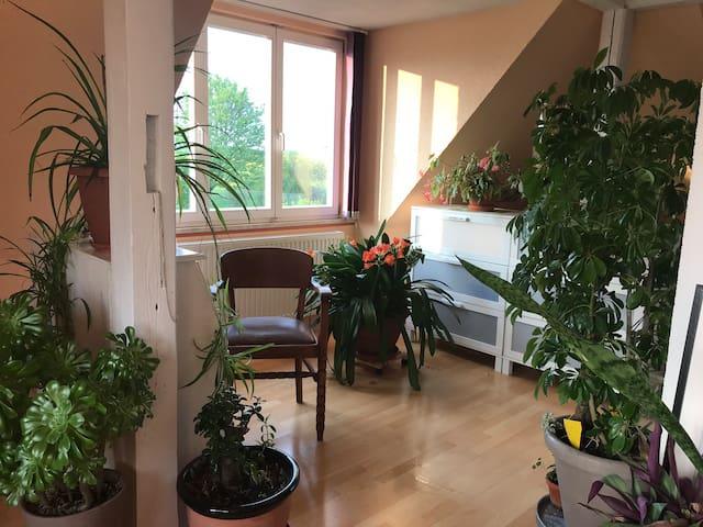 Ruhe-Oase im alten Forsthaus