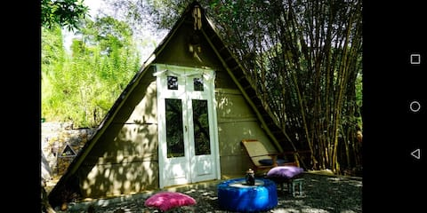 The Moksha - your escape from the mundane Room 1