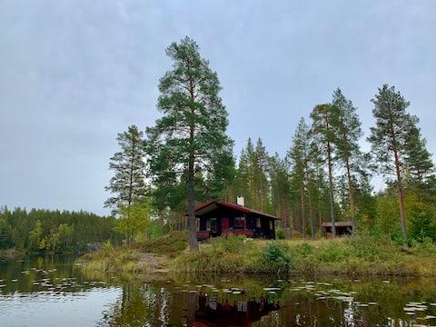 Skogshytte i vannkanten med fiskemuligheter