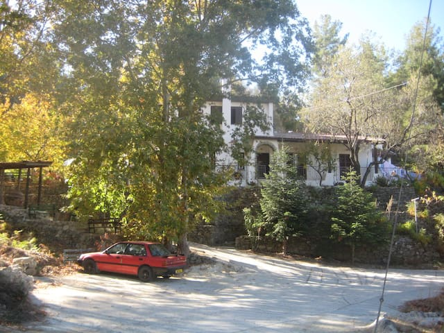 Mountain house, cool, quiet, green and traditional - Nicosia - Huis