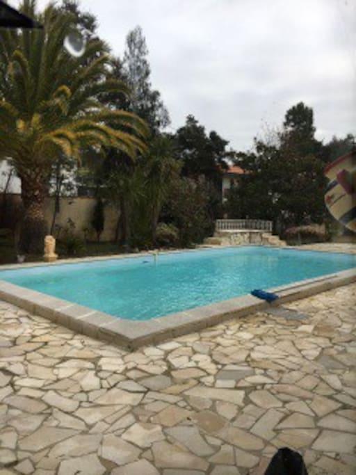 Maison landaise avec piscine maisons louer capbreton for Piscine capbreton