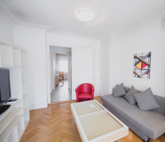 Great apartment Geneva center Cornavin lake 100m