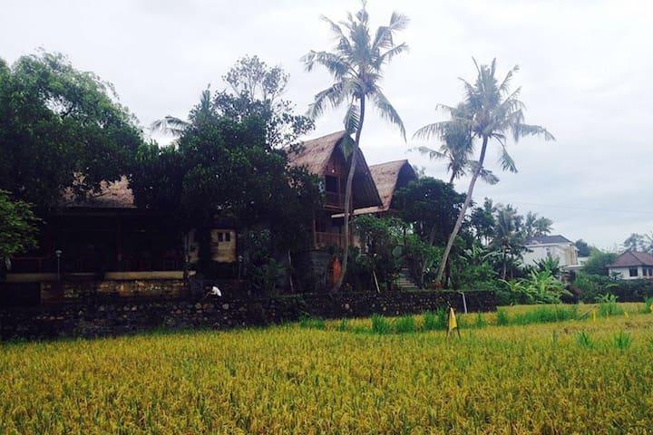Villa Rangkung Hill Bali - Gianyar - Haus