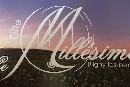 Bienvenue au gîte Le Millésime ! - Bligny-lès-Beaune - Dům