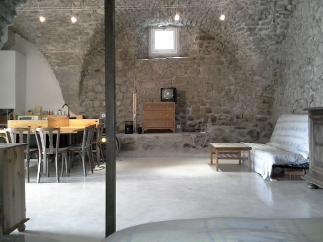 Grand studio pierre, Ancelle 20mn, accès handicapé - Buissard - Apartemen