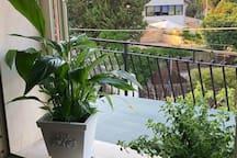 finestra cucina veranda