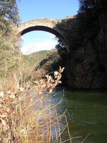 L'Olivette - Villemagne-l'Argentière - Dům